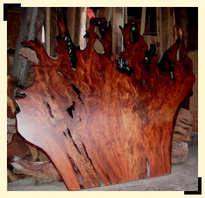Redwood Burl Headboard