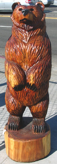 Redwood Bear