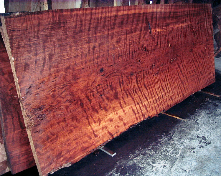 Old Growth Curly Redwood Slab -SOLD!