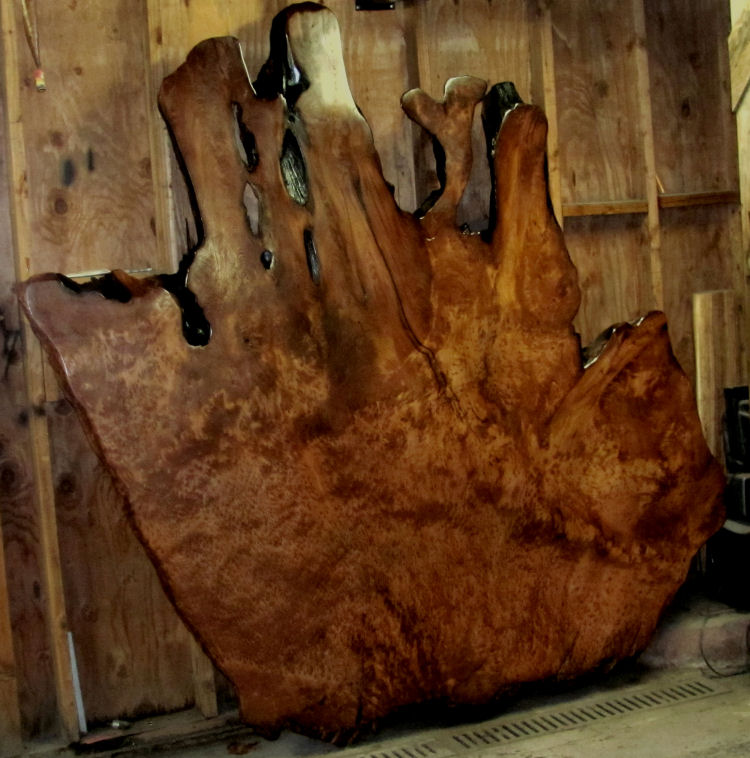 Lace Redwood Burl Table Top