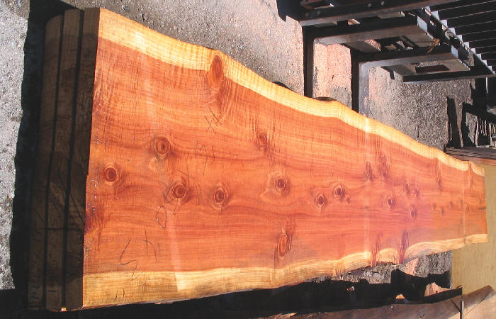 Natural Edge Redwood Slab -SOLD!