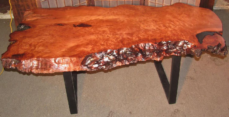 Redwood Burl Coffee Table with Steel Legs
