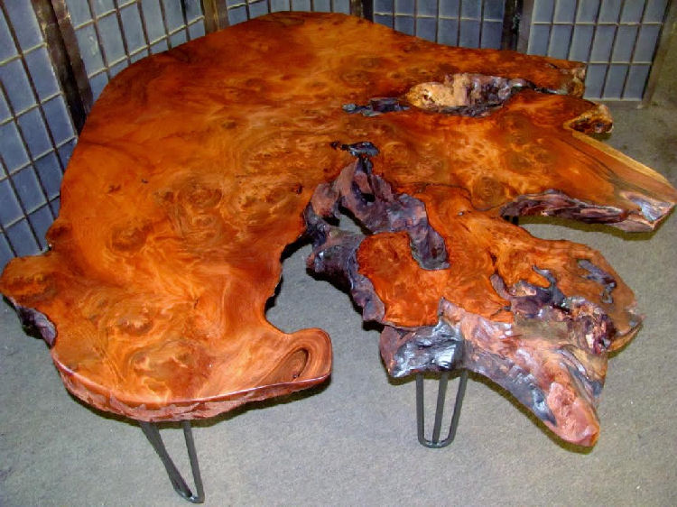 Redwood Burl Coffee Table with Hair-Pin Legs