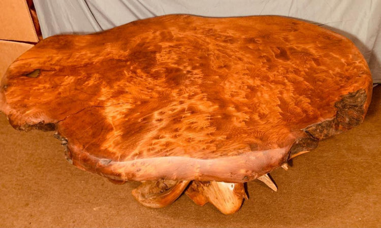 Lace Redwood Burl Coffee Table with Root Base
