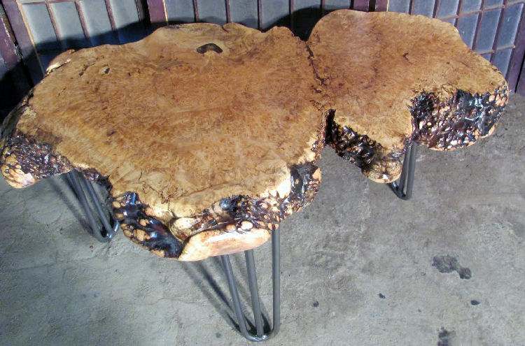 Redwood Burl Coffee Table with Root Base